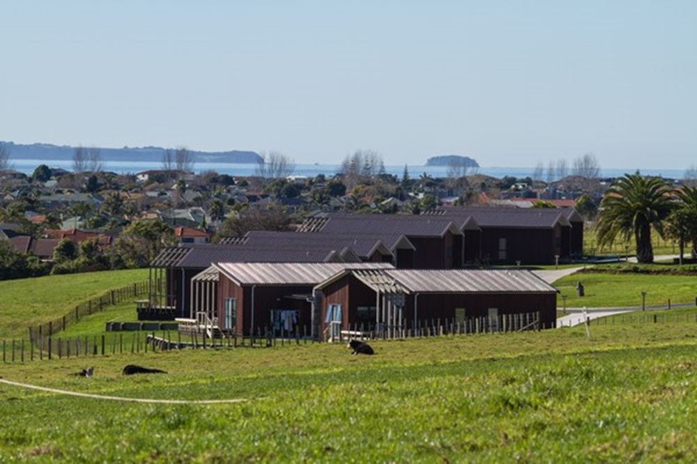 Babbage a leader in Maori housing design.