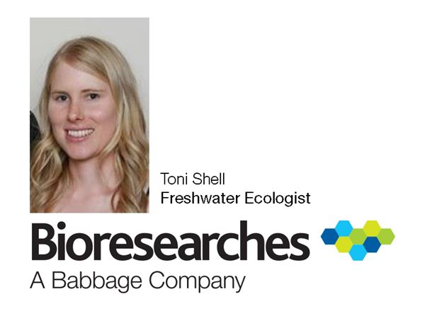 Babbage Bioresearches welcomes new freshwater ecologist Toni Shell.